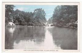 Lake Siloam Springs Park Arkansas 1920s postcard - $5.45