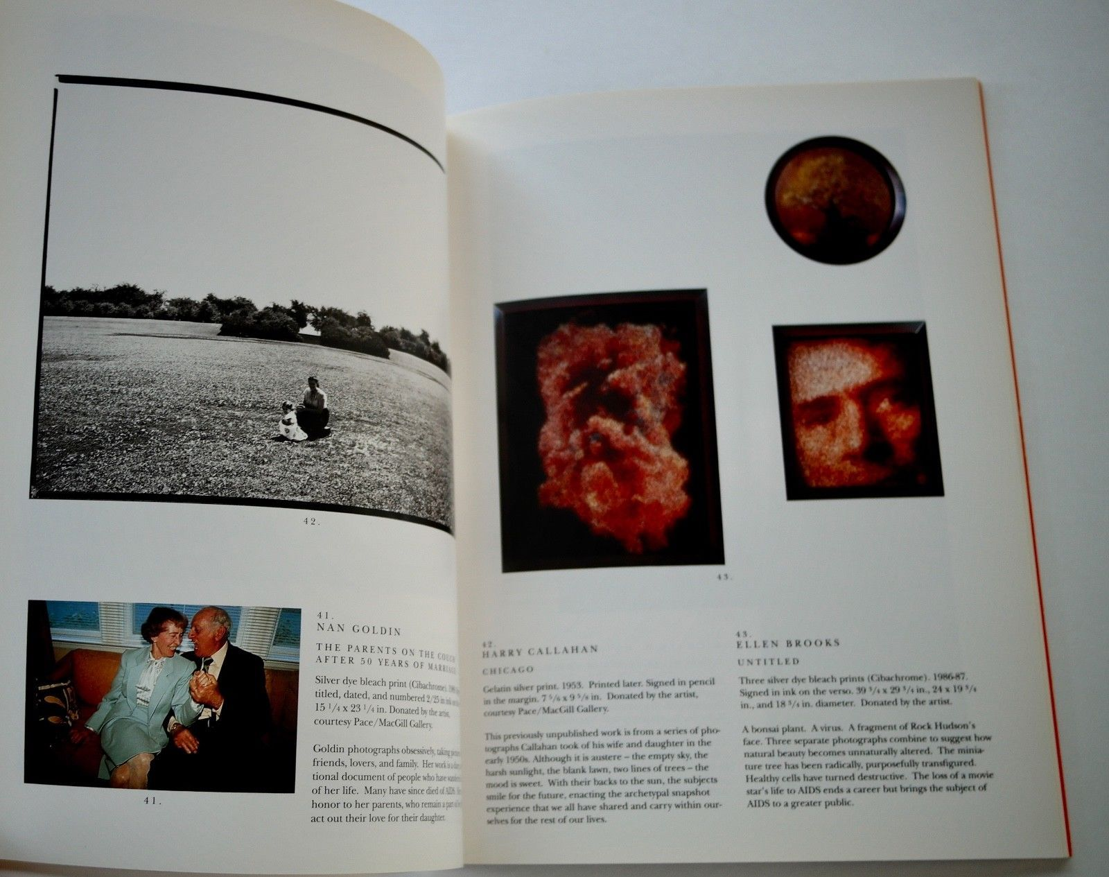 1990 The Indomitable Spirit Phototographers Friends Artists Time of AIDS
