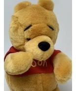 "Disney Store Parks Winnie the Pooh Bear Plush Soft Teddy 10"" Stuffed Animal - $11.50"
