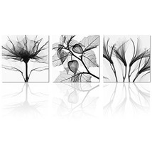 Visual Art Flowers Painting Canvas Prints Wall Decor Black and White Fra... - $44.40