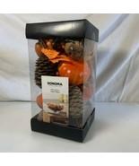 Sonoma Decorative Vase Filler Pumpkins Gourds Pine Cones Leaves Fall Autumn - $19.79