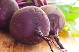 Sow No GMO Beet Ruby Queen Deep Red Beetroot Non GMO Heirloom Garden Root Crop V - $2.94