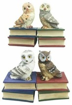 Wisdom Of The Forest Bibliography Owls Sitting On Books Figurine Owl Set... - $22.99