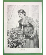 YOUNG BEAUTY Lovely Maiden Caring for Flowers - VICTORIAN Era Engraving ... - $13.46