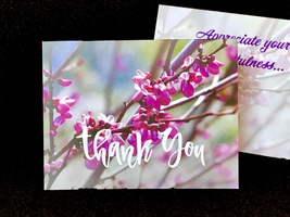 Thank You Cards - Pack of Ten - Redbuds in the Spring - $8.00
