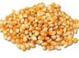 Popping Corn -12Lbs - $231.66