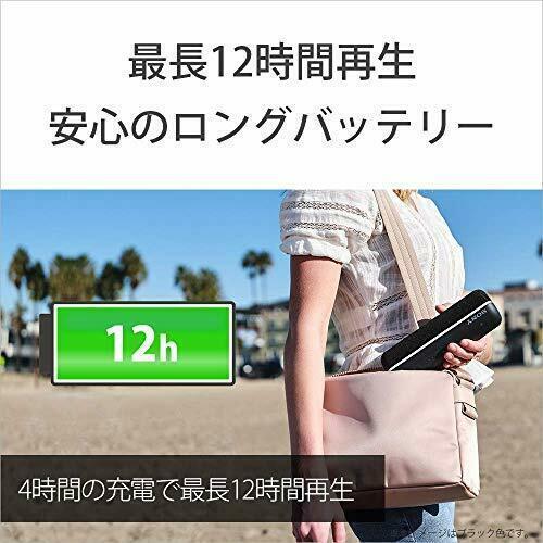 Sony SRS-XB22 Wireless Portable Speaker 2019 w/Tracking# Japan New
