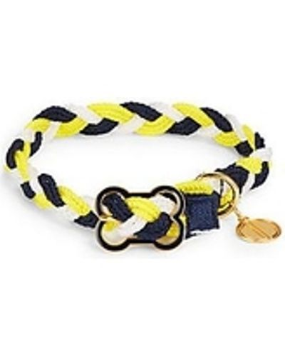 Dabney Lee Blue Gold & White Braided Dog Collar's Sz XS, S & M NEW