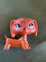 {Littlest Pet Shop} LPS RARE Scroll Ears Dachschund Blue Diamond Eyes fr... - $90.00