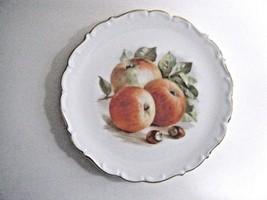 Schumann Hand Painted Plate Bavaria Arzberg Germany Fruit Apple Pattern ... - $14.80