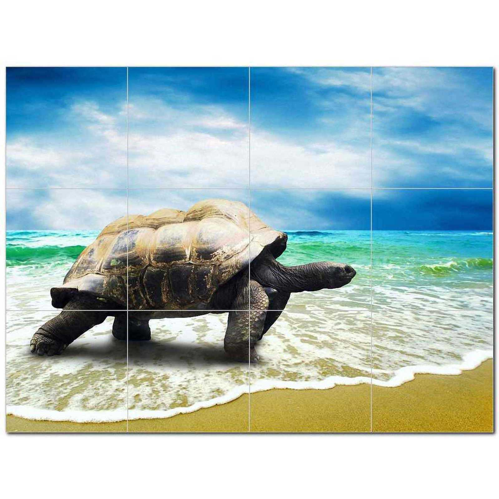 Primary image for Turtle Photo Ceramic Tile Mural Kitchen Backsplash Bathroom Shower BAZ406069