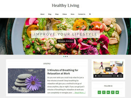 * HEALTHY LIVING * store blog affiliate website business for sale AUTO C... - $90.70