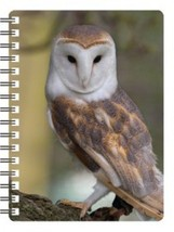 Barn Owl 3D Notebook - $5.23
