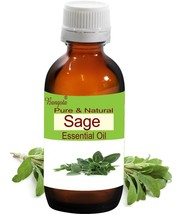 Sage Oil- Pure & Natural Essential Oil- 10ml Salvia officinalis by Bangota - $11.30