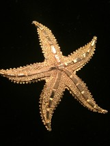 Vintage 80s gold tone etched starfish brooch image 2