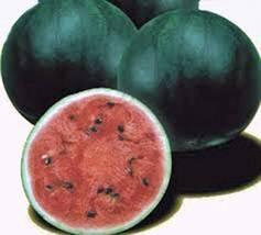 Watermelon Seeds, Sugar Baby, Heirloom, Organic, 100 Seeds, Non Gmo, Watermelons - $3.99