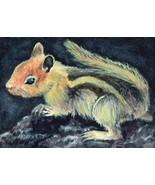 ACEO Original Painting Chipmunk animals wildlife rodent squirrel stripes - $16.00