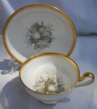 Spode Chatham Fruit CUP/SAUCER Set No 13 Gold Y5280 - $33.65