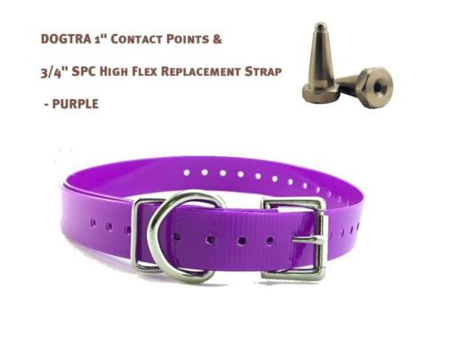 """DOGTRA 1"""" Contact Points & 3/4"""" SPC High Flex Replacement Strap - Dark Purple"""
