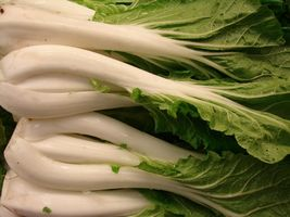 SHIP FROM US PAK CHOI 2000 SEEDS AUTUMN BOK CHOY CHINESE WHITE TGV1 - $11.56