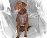 Kurgo Gray & Coral Journey Dog Harness, Medium By: Kurgo