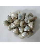 Vintage Blue Seashells Brooch Pin Faux Pearl Cluster Dangle Celluloid - $23.71