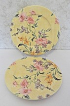 Lenox Perennial Garden The European Garden Collection Luncheon / Salad Plates 2 - $14.73