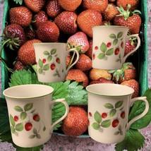 Andrea by Sadek Strawberry Ptn Mugs Set of 4 - £19.74 GBP