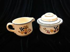 Vintage Noritake Verastone II Abundance Cream and Sugar Set Excellent Condition - $22.00