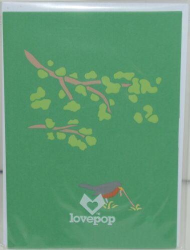 Lovepop LP1791 Robin Pop Up Card Slide Out Note White Envelope Cellophane Wrap