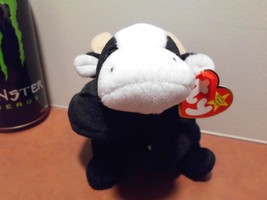 Ty Beanie Babies Daisy the Cow, no stamp,PVC, Swing tag error - $8.46