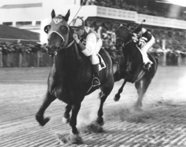 Seabiscuit beat War Admiral 8X10 Matted BW Horse Racing Memorabilia Photo - $6.95