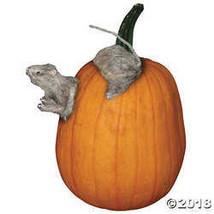 Pumpkin Push-Ins, Rat  - £9.92 GBP