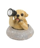 Garden Figurine Puppy Looking Through is Solar LED Lighted Telescope - $31.45