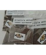 Artemisia annua sweet wormwood seeds (1 Gram)  + 2 Grams Nettle seeds - $8.00