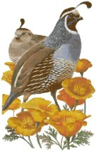 California State Bird and Flower California Quail and Poppy Counted Cros... - $19.04