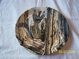 Danbury Mint Wedgwood owl Plate The Majesty of Owls Scops Owl Trevor Boyer CP150 - $35.67