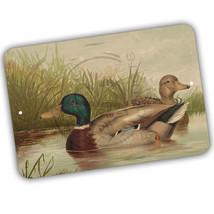 Mallard Ducks Swimming In A Lake Male and Female 8x12 Aluminum Sign - $15.79