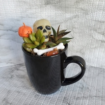 Halloween Planter with Live Succulents, Mug Garden, Skull Halloween fairy garden