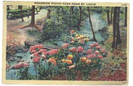 St Louis MO Roadside Picnic Park Postcard Linen Colourpicture - $3.34