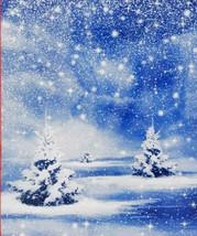 Christmas Winter Wonderland Snow Plastic Wall Mural 42x50 in. w - $5.49