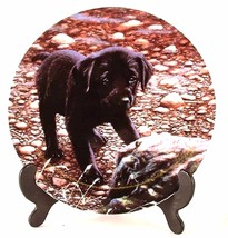 Danbury Mint Friend or Foe Playful Puppies collection John Silver Dog Plate - $37.17