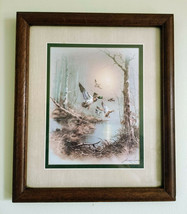 Mallard Ducks In Flight Framed Waterfowl Bird Art Print by Andres Capinas - $24.99