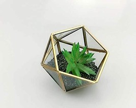 Bella's garden Geometric Copper Terrarium Container Desktop Planter for ... - $526,49 MXN