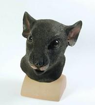 Rat, Halloween,Animale Maschera,Costume - $28.87 CAD