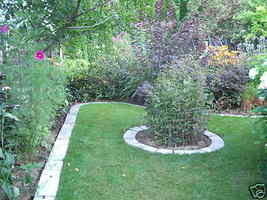 4 Large DIY Concrete Garden Edging Lawn Landscape Mold Set Wall Blocks Fast Ship image 5