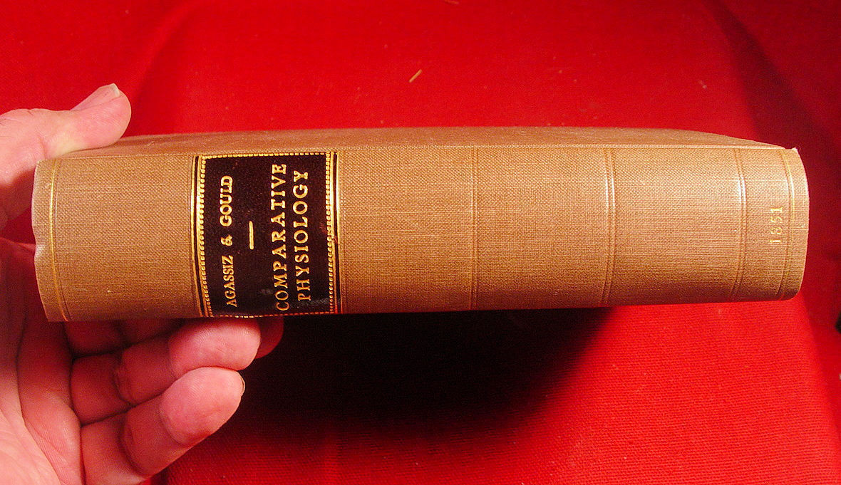 Outlines Of Comparative Physiology Louis Agassiz  1851 first edition