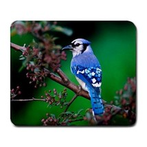 Mouse Pad Birds Beautiful Blue Bird In Flower Nature Design Animal Video Game - $6.00