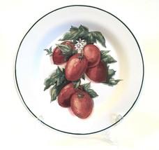 """Williams Sonoma Harvest Vegetable Roma Tomatoes 8-1/2"""" Salad Plate Portugal - $24.99"""