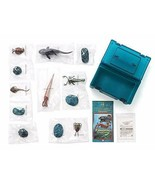 COLORATA Paleozoic organisms figures real fish x 6 kinds 3D - $86.68